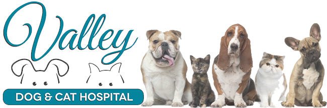 Logo for Veterinarians in Owings Mills | Valley Dog and Cat Hospital